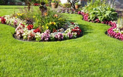Colorscaping – The Science Behind Getting the Most Enjoyment From Your Landscaping