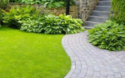Five Lawn Maintenance Myths Exposed